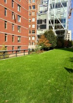 48Hours-new-york-Highline-apartments