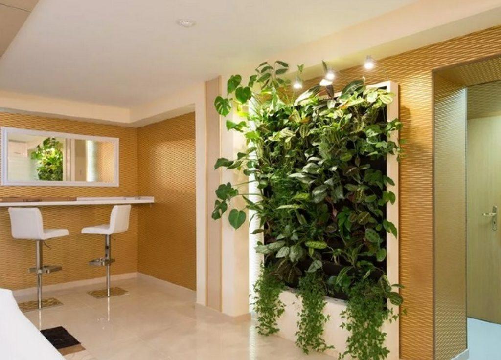 кухня-гостиная зонирование растениями