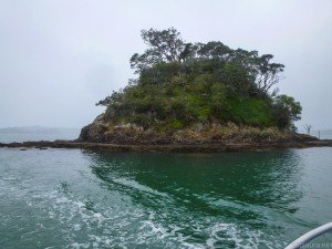 Little island on Bay of Islands.