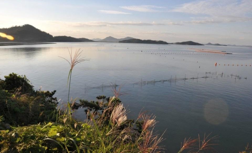 Shinan Islands, South Korea