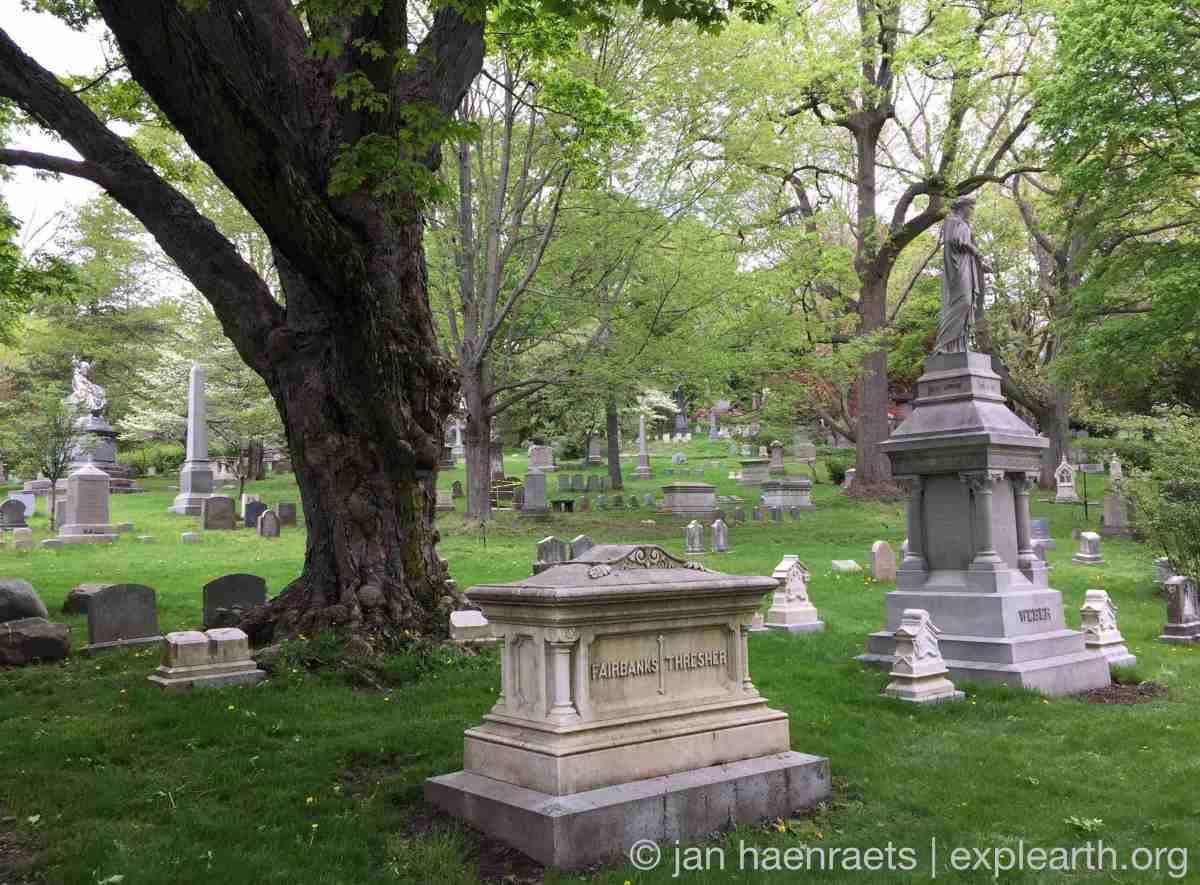 Mount Auburn Cemetery in Spring