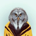 Zoo-Portraits-Yago-Partal-explicark03