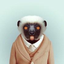 Zoo-Portraits-Yago-Partal-explicark11