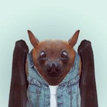 Zoo-Portraits-Yago-Partal-explicark21