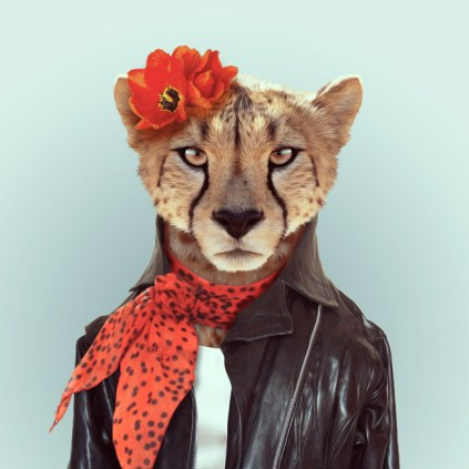 Zoo-Portraits-Yago-Partal-explicark28