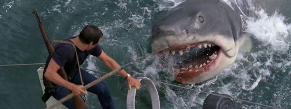 retour-sur-les-dents-de-la-mer-le-premier-chef-d-oeuvre-de-steven-spielberg-1500x562