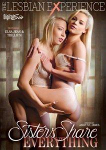 Digital Sin Cover (K.Woods)