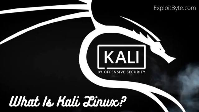 What Is Kali Linux?