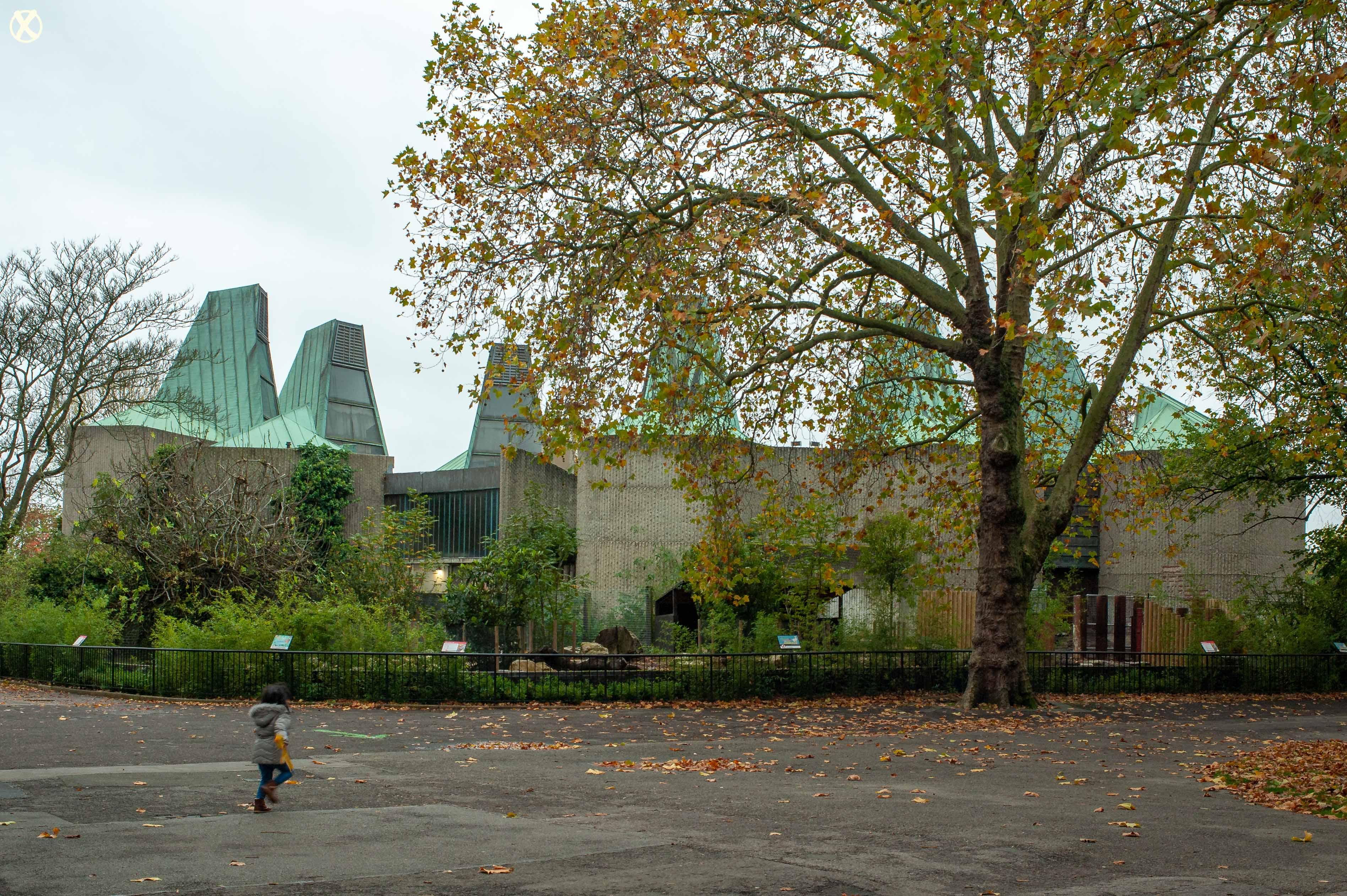 Elephant & Rhinoceros Pavilion London Zoo