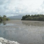 Limon Lagoon