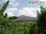 Cloud Forest Tours