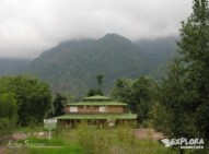 img 5656 300x225 Rainforest Eco Tours