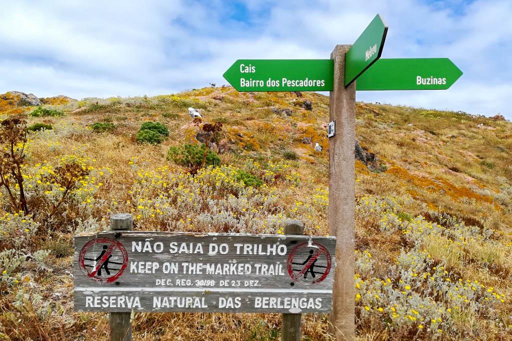 Trilhos Reserva Natural das Berlengas