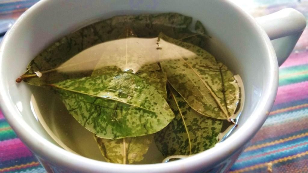 Chá de Coca para doença em viagem