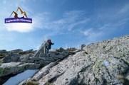 pico tres mares alto campoo fuente chivo explorando rincones (7)