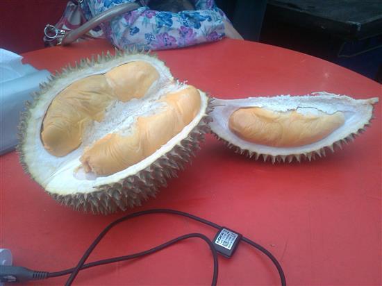 order jer nak durian gred apa