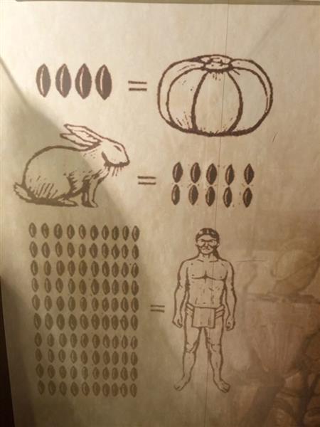 Kaum Mayan menganggap koko sebagai matawang yang sangat berharga sehingga dapat menukarkannya dengan seorang hamba