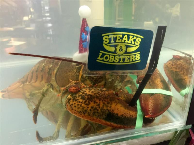 santa clause lobster
