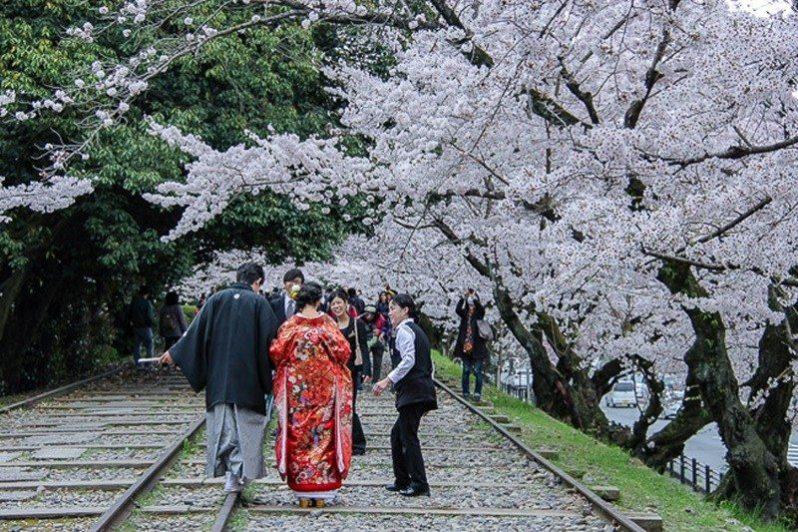 Indahnya Sakura...! (pic: japan-guide.com)