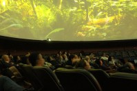 Enjoying the movie in the round