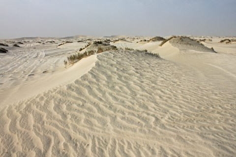 Second Road Trip To Qatar – The Majesty Of The Dunes