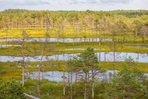 Lahemaa National Park, Estonia – Culture, Nature and Soviet Ruins