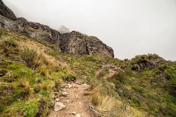 Climbing Rucu Pichincha