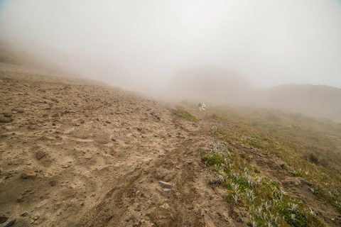 Climbing The Rucu Pichincha Volcano, Ecuador – Hiking To The Clouds