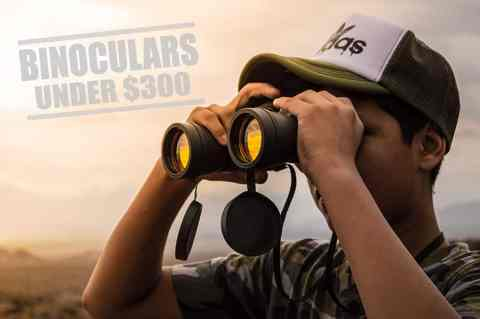 Best binoculars under 300 dollars thumb