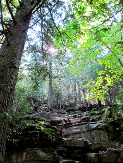 Cup and Saucer Trail, Manitoulin Island.