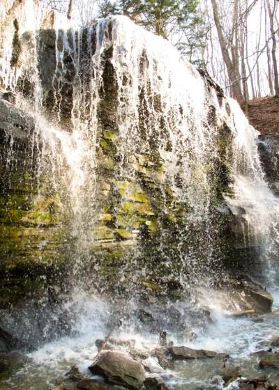 Terrace Falls Short Hills Provincial Park