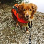 Rowen Learns How to Canoe