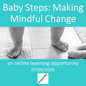 Baby Steps: Making Mindful Change