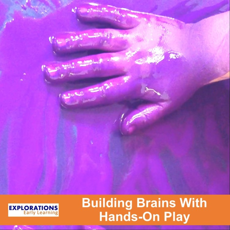 Building Brains With Hands-On Play