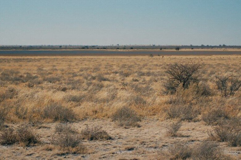 Botswana - ExplorationVacation - 09-13_02-21-26 the pan2