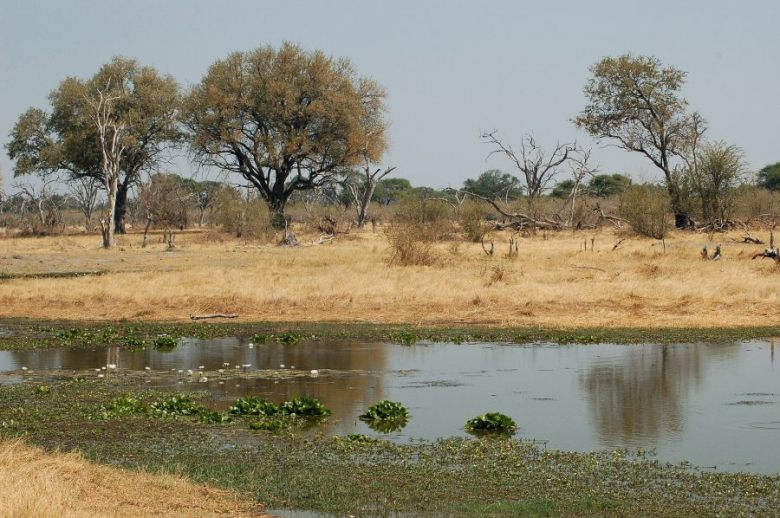 Botswana - ExplorationVacation - 09-22_06-45-56