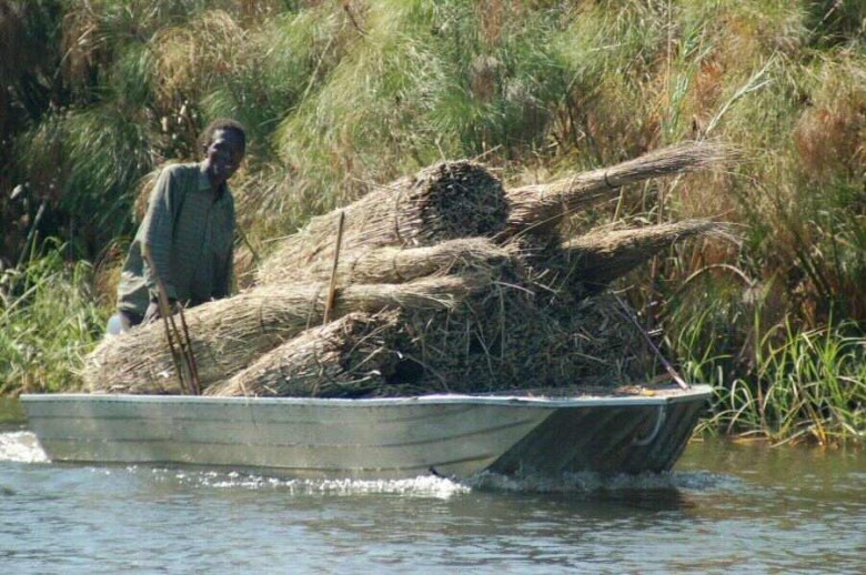 Botswana Okavango - ExplorationVacation - 2005-09-17_motorboat with reeds