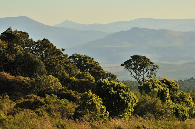 Wonderview area South Africa - www.ExplorationVacation.net