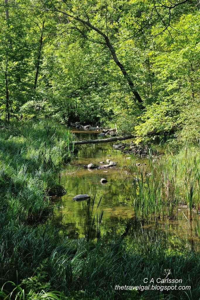 07-Leech Lake 16 DSC_5234 creek in Minnesota