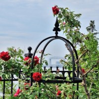 The Gardens of Leif Ericson Park, Duluth, Minnesota