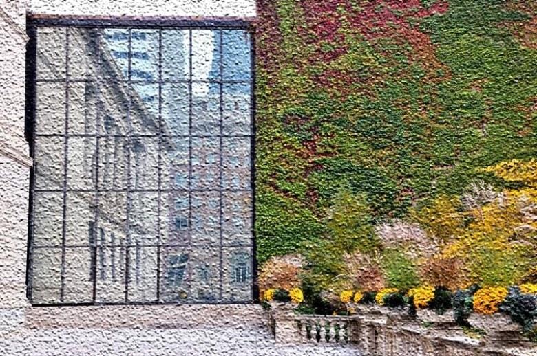 Chicago Art Institute in fall