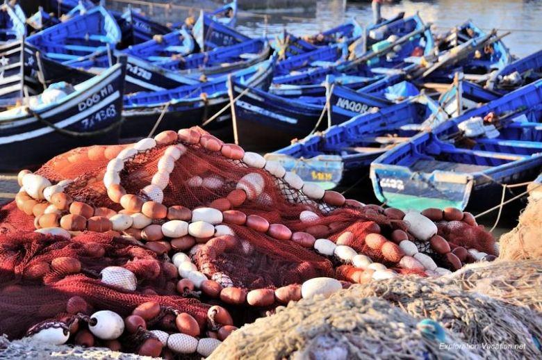 Essaouira fishing 28 DSC_8268 Morocco