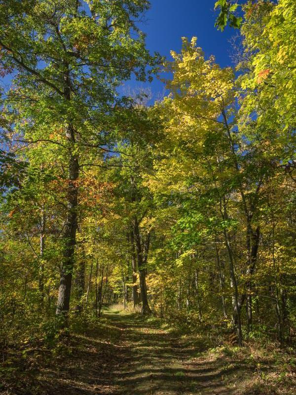 fall in Saint Croix State Park Minnesota - www.ExplorationVacation.net