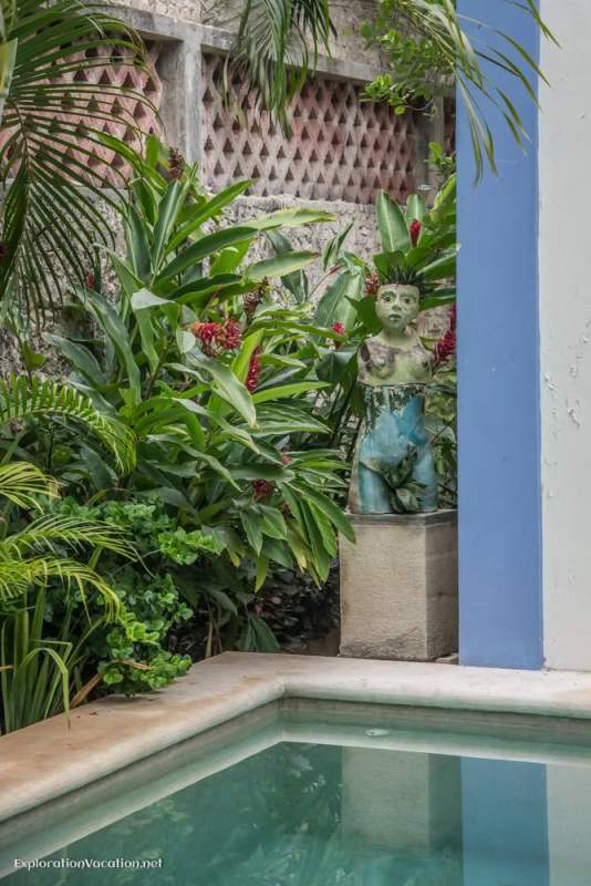 garden - house tour in Merida