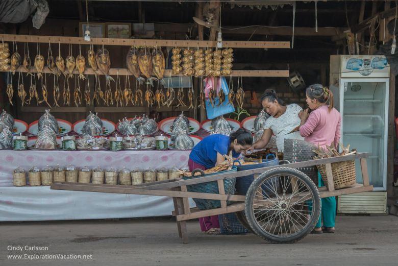 Nam Ngum fish market Laos