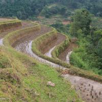 Northern Vietnam road trip: Hoang Su Phi to Bac Ha