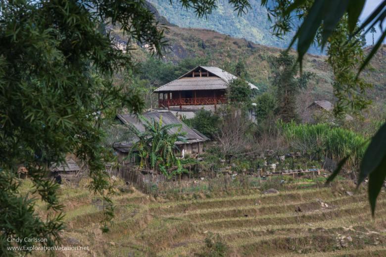 Terraced fields Vietnam road trip Black Hmong village Sapa - ExplorationVacation