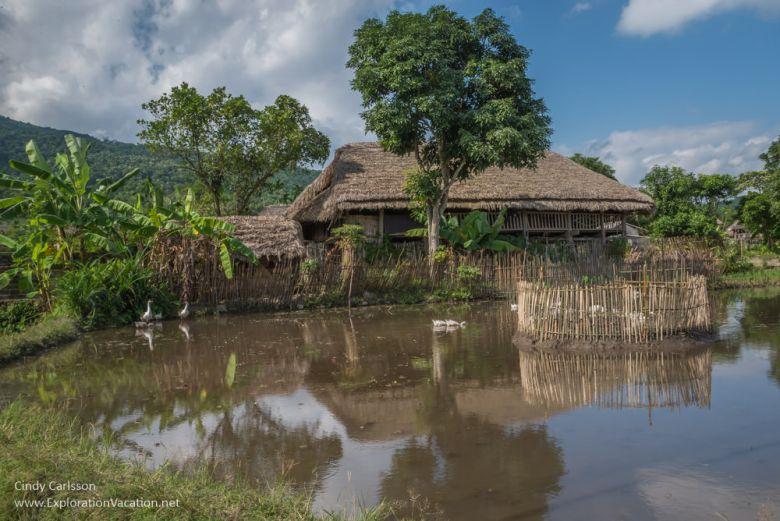 Me Village Northern Vietnam road trip - ExplorationVacation
