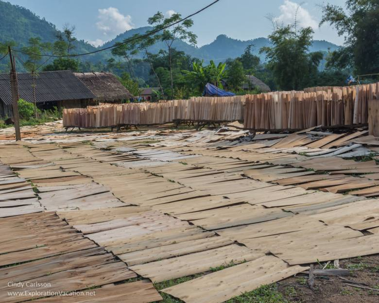 Plywood factory Northern Vietnam road trip - ExplorationVacation