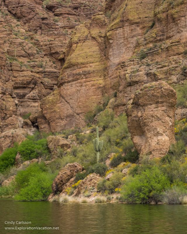 landscape Dolly Steamboat cruise Canyon Lake Apache Trail Arizona - www.explorationvacation.net